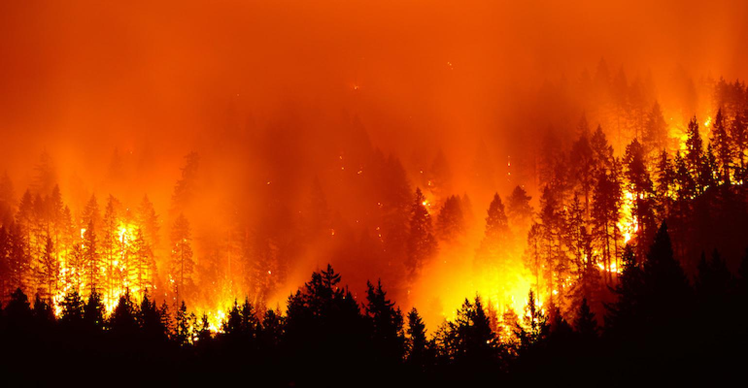 Will Technology Help Extinguish Raging Fires in the West?