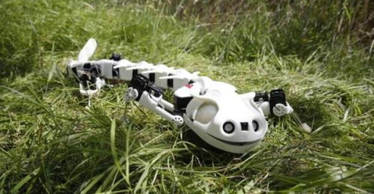 Salamander Robot Walks Like the Real Thing