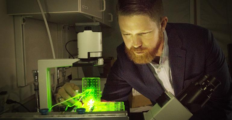 bioprinted tendons