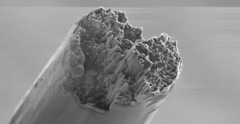 materials, nano, cellulose, high strength, spider silk